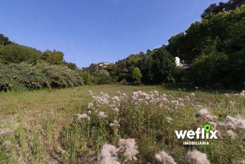 quinta em sintra com 2 casas independentes - weflix real estate 1d