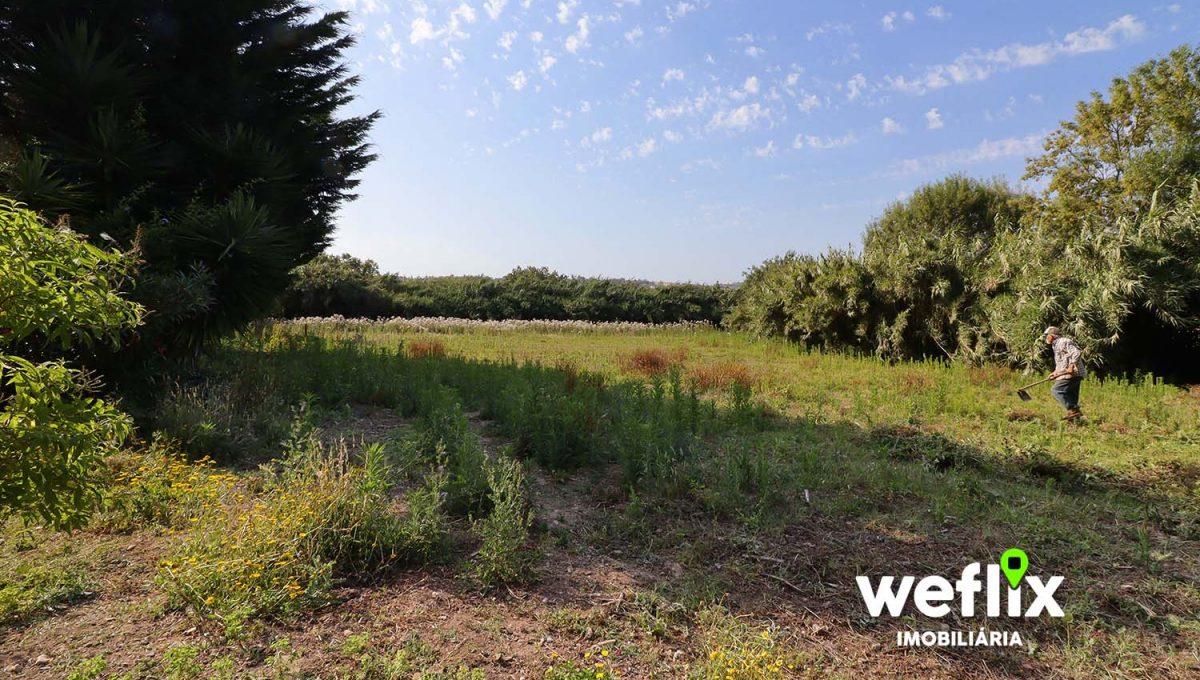 quinta em sintra com 2 casas independentes - weflix real estate 1d1