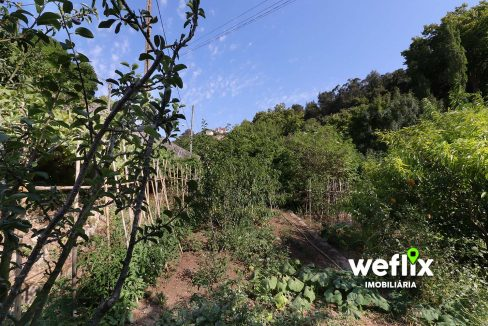 quinta em sintra com 2 casas independentes - weflix real estate 5k