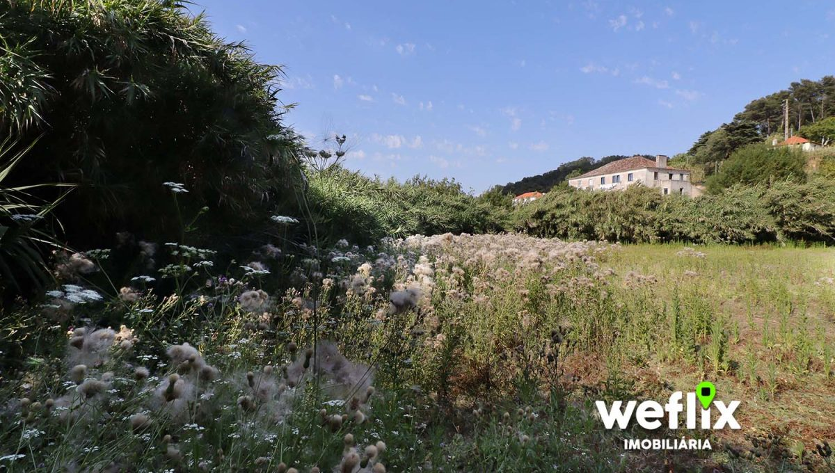 quinta em sintra com 2 casas independentes - weflix real estate 5m