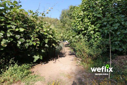 quinta em sintra com 2 casas independentes - weflix real estate 6
