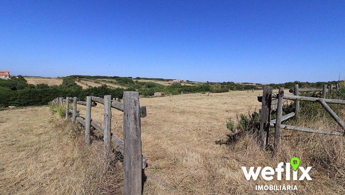 quinta cavalos terreno janas sintra weflix imobiliaria real estate 1p