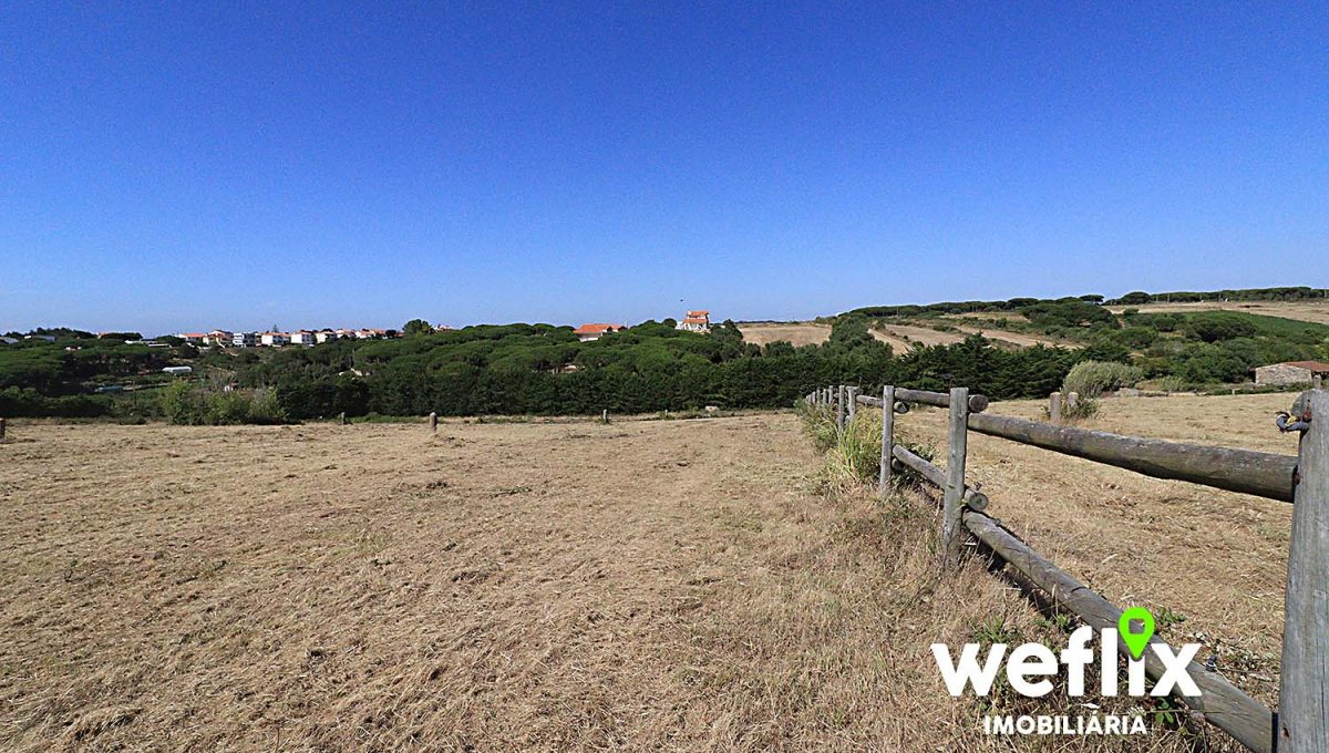 quinta cavalos terreno janas sintra weflix imobiliaria real estate 1t