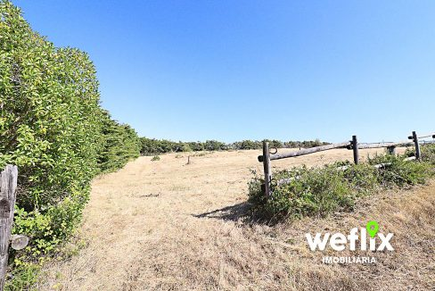 quinta com cavalaricas terreno sintra janas - weflix imobiliaria real estate 8b