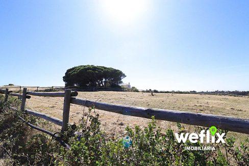 quinta com cavalaricas terreno sintra janas - weflix imobiliaria real estate 8e